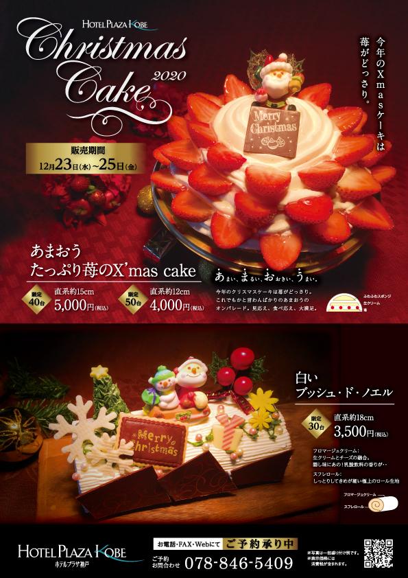 2010_Xmas_cake_chicken_2020_web